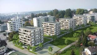 Feldmoos Bregenz
